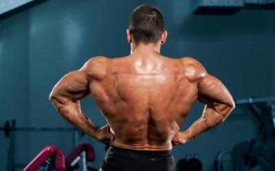 Favorite Back Building Exercises