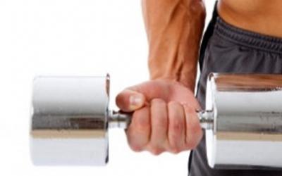 Beginner's Guide To Building Your Arms