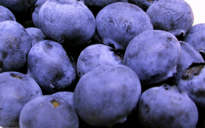 The Ultimate Berry Fruit For Healthy Living