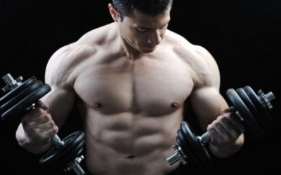 How To Optimize Fat Loss & Muscle Building