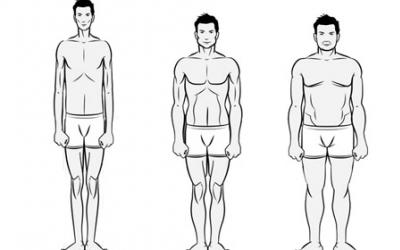Your Body Type: Ectomorph, Mesomorph or Endomorph?