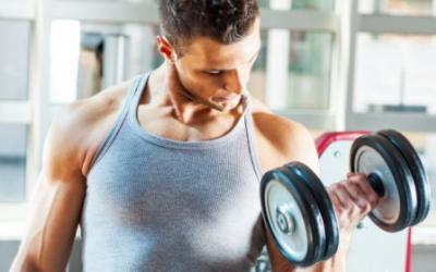 M&S 2014 Muscle Building Transformation Guide