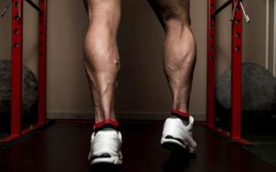 Standing Calf Raise vs. Seated Calf Raise