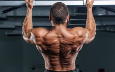 8 Back Blasting Tips To Improve Size & Strength