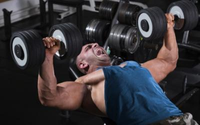 Cluster Set Training For Muscle Gains