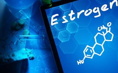 Estrogen Dominance: The Effects Of Estrogen On Body Composition