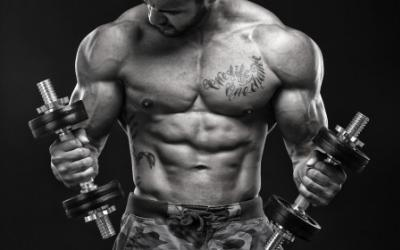 The Best Muscle Building Exercises