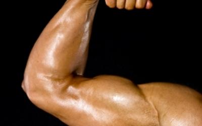 Bringing Up The Hamstrings And Forearms – The Forgotten Muscles