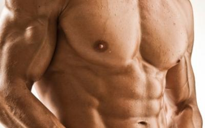 Muscle Building Genetics: Myth And Reality