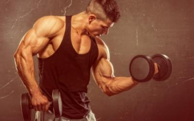 Does High Volume Training Build More Muscle?