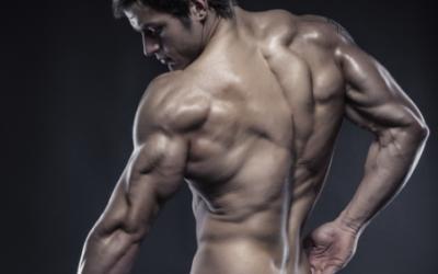 How To Build Giant-Sized Horseshoe Triceps