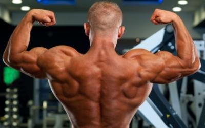 8 Week Intense Workouts: Part 1 - Back Workout