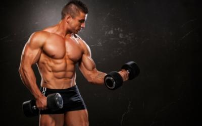 Building Muscle: Why Less Is More