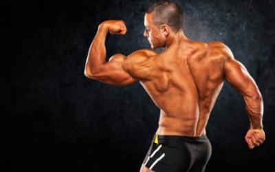 5 Things You May Not Know About Building Muscle