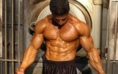 Beginner Muscle Building Essentials