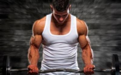Ranking The Best Muscle Building Exercises