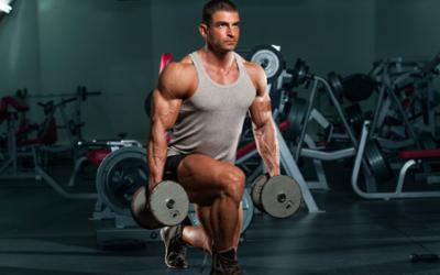 Protein Synthesis, Muscle And Training Frequency