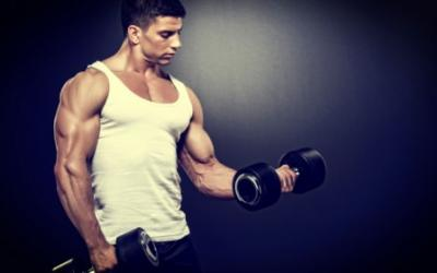 Varying Protein Sources & Muscle Building