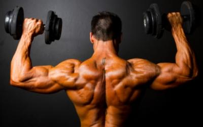 5 Potent Shoulder Building Exercises