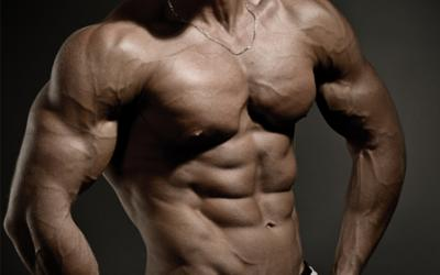 Cutting & Diet Plans From Industry Experts!