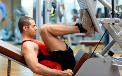6 Squatless Leg Training Tips