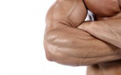 The Top 5 Exercises For Increasing Forearm Mass