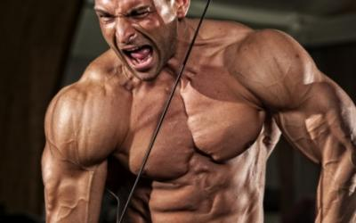Want Big Arms? Focus On Triceps