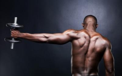 Ultimate Triceps Training: Increase Your Arm Size In 16 Weeks