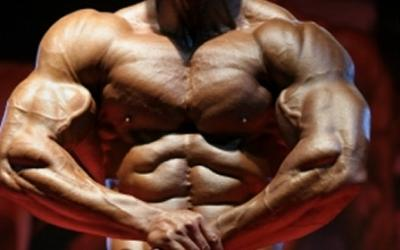 Understanding Muscular Fitness