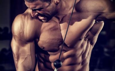 Building Muscle & Strength Without A Barbell