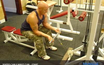 Seated Cable Wrist Curl