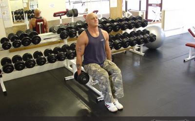 Seated Hammer Curl