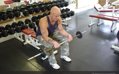 Seated Reverse Barbell Wrist Curl