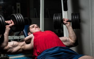 Ultimate Workout Nutrition Guide: Part 2