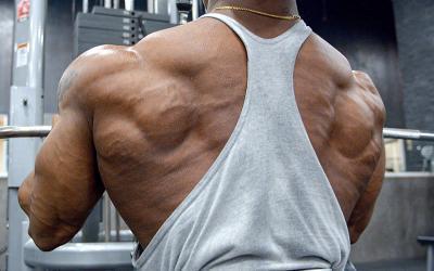 Brandon Hendrickson's Prep Back Workout
