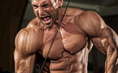 100 Rep Hell: A Shocker Muscle Building Workout