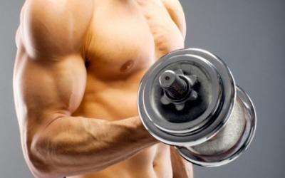 6 Week Arm Builder Workout Plan