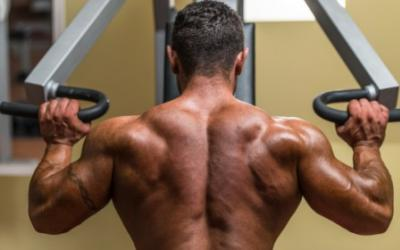 Build Shoulders Like Boulders Workout