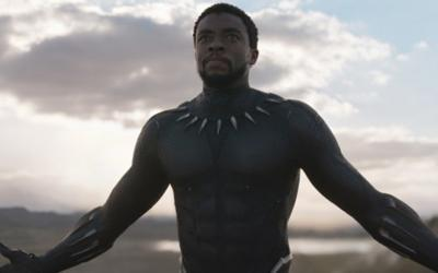 Chadwick Boseman Inspired Workout: Train Like Black Panther