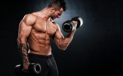 Command Your Arms To Grow 2 Day Workout