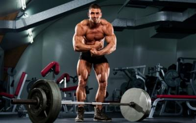 Density Training v2.0: Get Stronger And Leaner