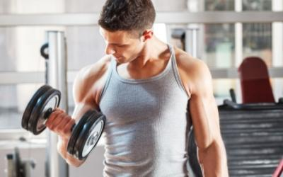 3 Day Power Muscle Burn Workout Split
