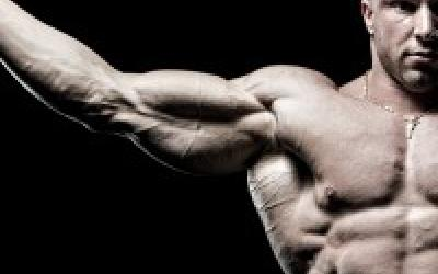 Scrutiny's 4 Day Muscle Building Split