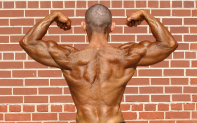 Sean Sullivan's Back Specialization Workout
