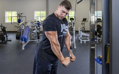 12 Week Triple Header Triceps Workout Program