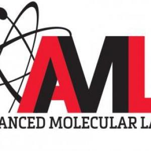 Team AML