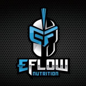 Team eFlow