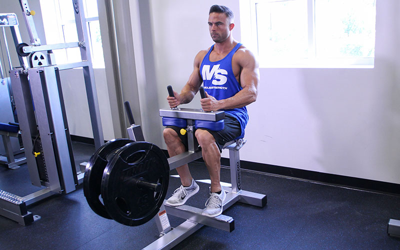 Toes Out Seated Calf Raise: Video Exercise Guide & Tips