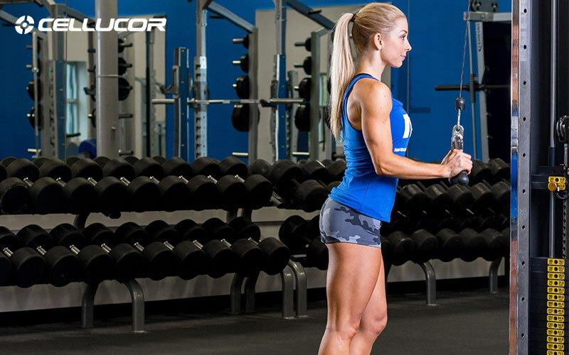 Training Talk: Should Arms Have Their Own Training Day?
