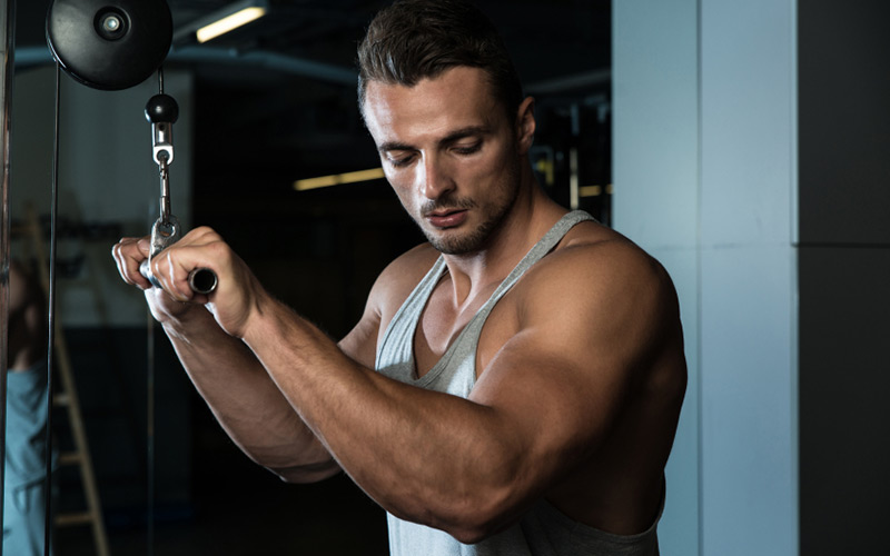 Thrash Your Triceps & Grow Using These 9 Training Methods